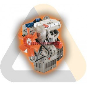 Motore completo lombardini ldw502